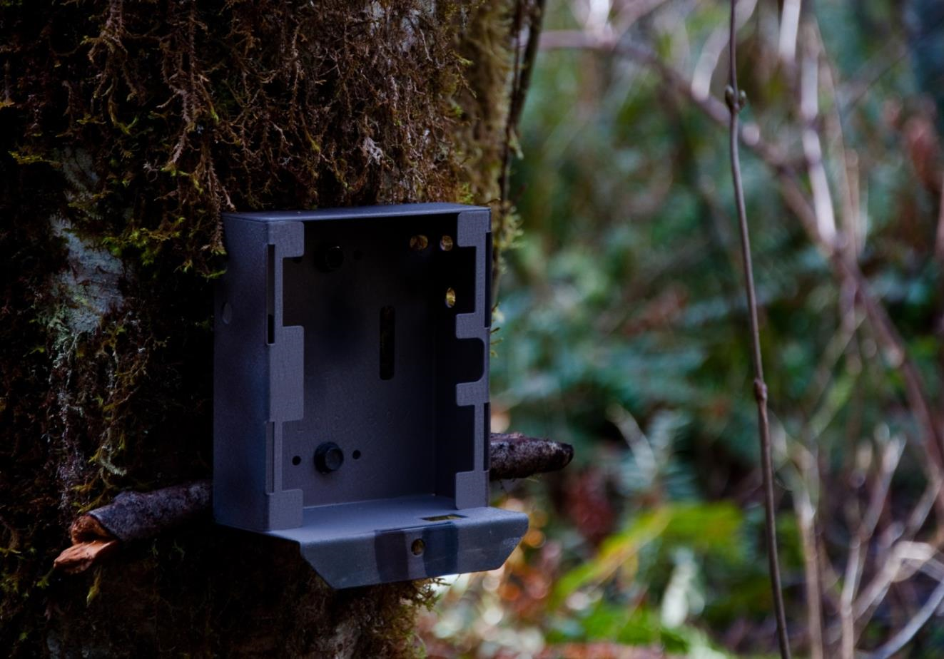 Security for trail cameras in Oregon