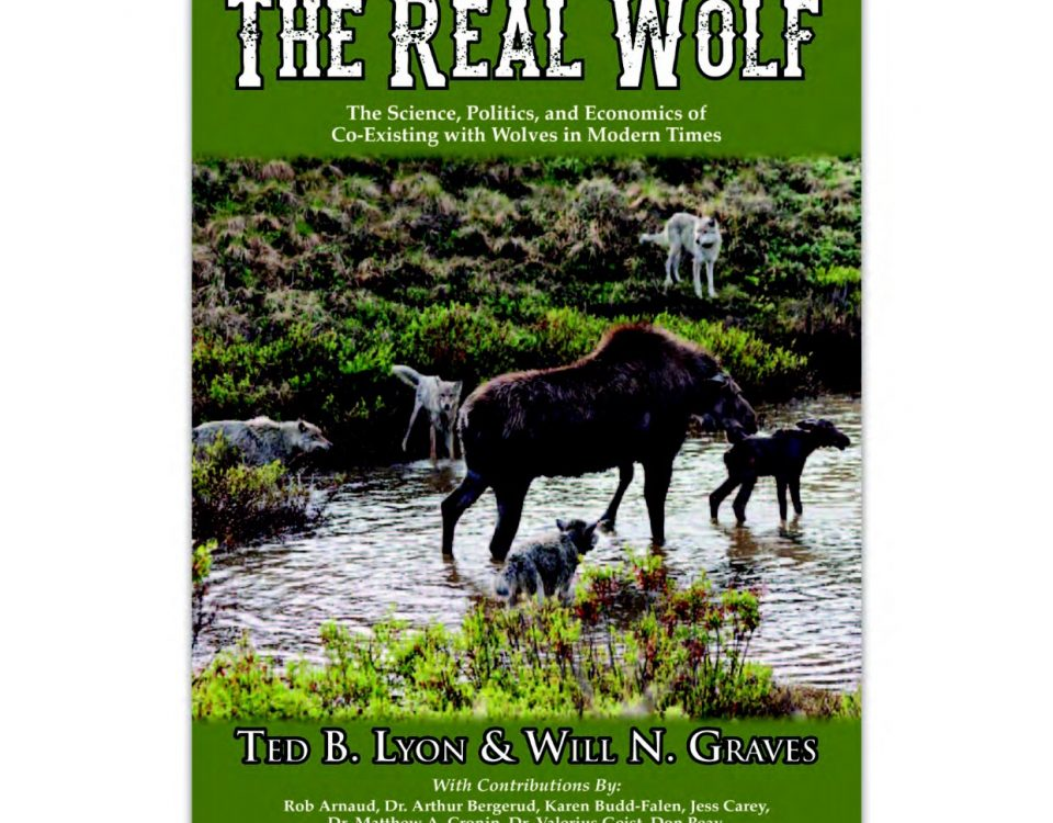 The real wolf by Ted Lyon